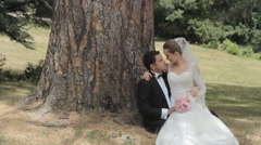 Enamoured newlyweds sitting at the trunk of a tree in the park Stock Footage