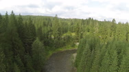 Stock Video Footage of  Flight of  mountain river with  beautiful wood. Aerial  shot in summer day