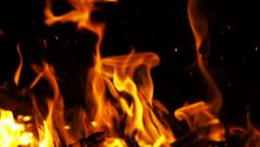 Stock Footage Thin Branches Fire Burned with Sparks Slow Motion - stock footage