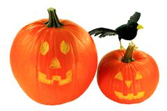 Halloween decoration over white background Stock Photos