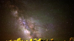 Astrophotography Time Lapse of Milky Way over Alpine Forest -Tilt Down- Stock Footage