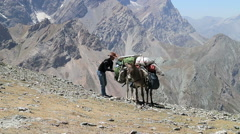 Man checking a cargo on a donkey, Pamir, Tazhikistan Stock Footage