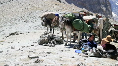 Donkey comes to the camera, Pamir, Tazhikistan Stock Footage