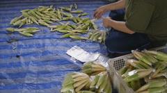Arrangement baby corn in plastic bag Stock Footage