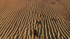 Beach sand texture lines - stock footage