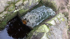 4k Ferriferous water falling down in small brook Stock Footage