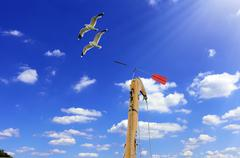 detail sailboat mast with wind directional indicator - stock photo