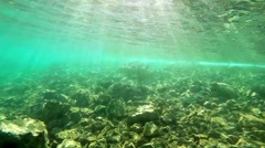 coral reef scene with numerous tropical fish coming into the frame - stock footage