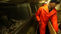 workers dismantled ship fresh fish - stock footage