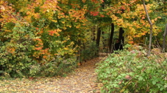 Man walking in the trails in Autumn Stock Footage