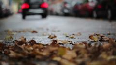 Leaves on the street - autumnal urban scene, traffic and cars in the background - stock footage