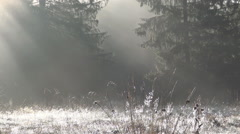 Sunrise and fog in a cold morning. Mountain landscape. Frozen autumn day. Stock Footage