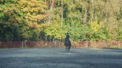 Two Girls riding a horse Stock Footage
