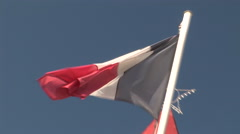 French Flag over Polynesia Tahiti Government Building - stock footage