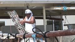 French Polynesia Tahiti Pearl Netting Stock Footage