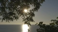 Sun Peaking Through Tree Leafs over Lake Stock Footage