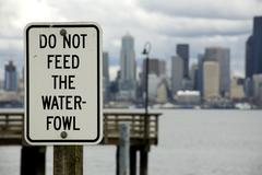 Do not feed the waterfowl Stock Photos