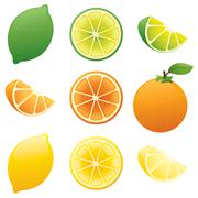 Juicy slices Stock Illustration