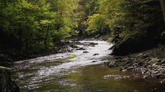 Autumn leaves fall gently into mountain river Stock Footage