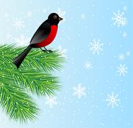 new-year background with spruce branch and bird bullfinch - stock illustration