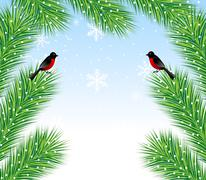 New-year background with spruce branch and bullfinch Stock Illustration