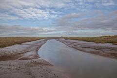 lincolnshire salt marsh - stock photo