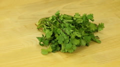 Bunch cilantro on a wooden board - stock footage