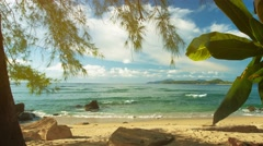 Plants on the shore of a tropical sea. beautiful exotic landscape. phuket isl Stock Footage