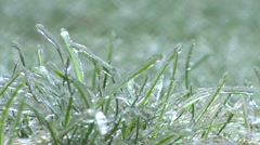 Ice Storm - Ice Covered Grass Rack Focus - stock footage