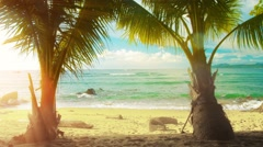 Palm trees, tropical beach and warm sea. sunny day in thailand Stock Footage