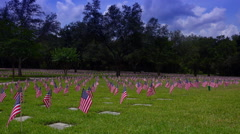 Rows of flags decorating military graves. Arkistovideo