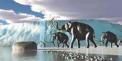 glacier mammoths - stock illustration