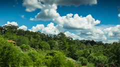 Borneo Forest Timelapse Clouds Stock Video Stock Footage