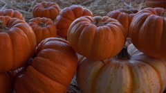 4K Pumpkins Straw Country Background Slider Stock Footage
