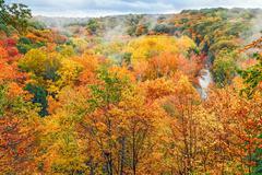 Autumn Overlook Stock Photos