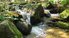 4K Clean fresh water of forest stream running over mossy rocks Stock Footage