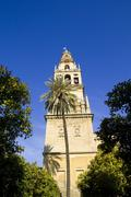 belfry of the mosque of cordoba - spain - stock photo