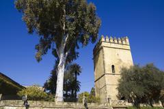 tower of lions.. alcazar of cordoba. - stock photo
