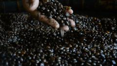 Fresh roasted coffee beans. HD Stock Footage