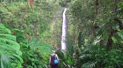 Akaka Falls, senior citizen walking - stock footage