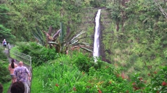 Akaka Falls, tourist visitors viewing Stock Footage