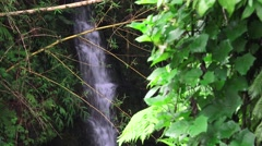 Small waterfall in jungle Stock Footage