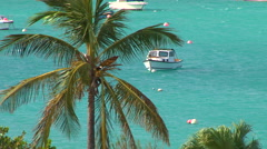 approaching hurricane boats at anchor - stock footage