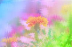 soft focus color filtered as background. - stock illustration