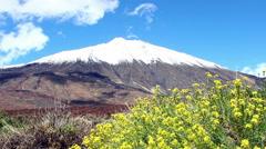 Teide Tenerife Stock Footage