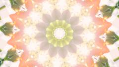 Beautiful kaleidoscopic circle pattern of green foliage. Stock Footage