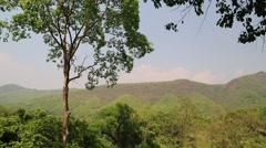Trees in Erawan National Park in western Thailand Stock Footage