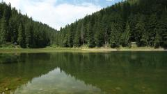 Lake Synevyr in Carpathian Mountains of Ukraine Stock Footage