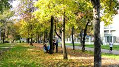 Autumn park (forest - trees) - fallen leaves and path - grass - people relax Stock Footage