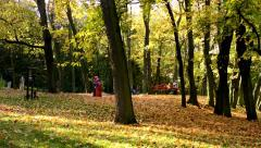 Playground - people relax -  Autumn park (forest - trees) - Fallen leaves Stock Footage
